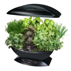 aerogarden full of herbs